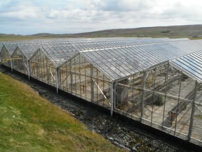 Shetland - Glasshouse